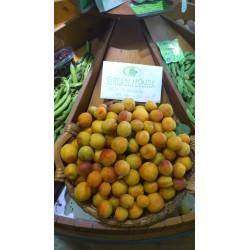 Βιολογικά Βερύκοκα Πέλλας Βιολογικής Καλιέργειας Bio, Ελληνικά, Φρούτα Greenhouse
