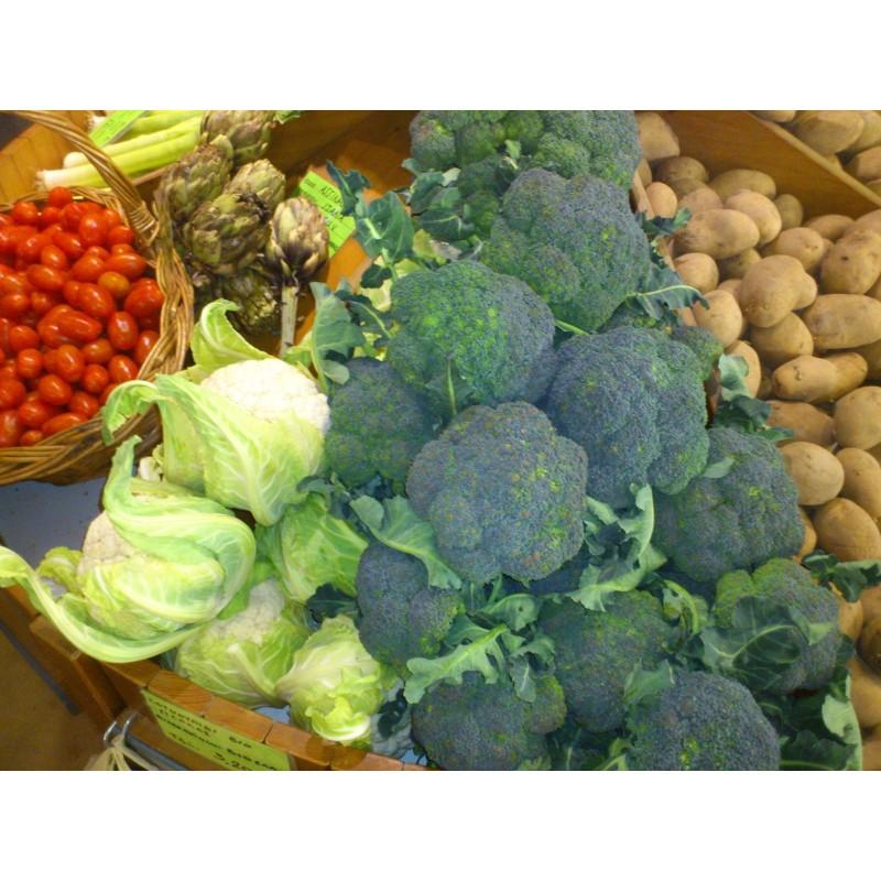 Βιολογικό Μπρόκολο Bio, Ελληνικό, Λαχανικά Greenhouse