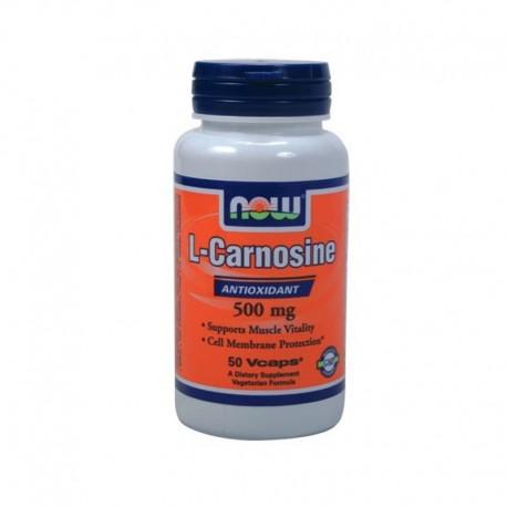 L-Kαρνοσίνη 500mg 50vcaps, Now