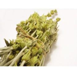 Βιολογικό Τσάι του Βουνού Bio, Ελληνικό, Θετική Δόνηση