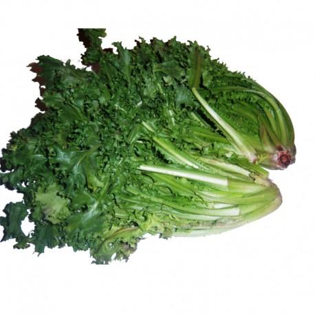 Βιολογικά Αντίδια Φρέσκα Bio, Ελληνικά, Λαχανικά Greenhouse