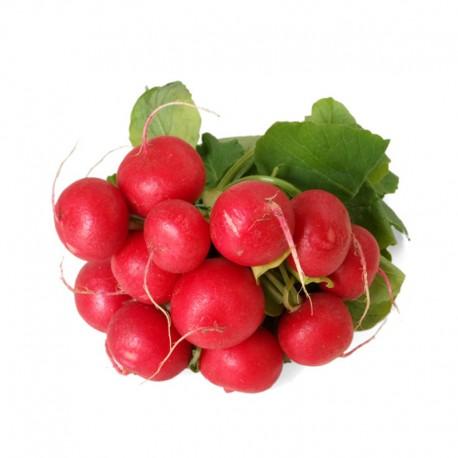 Βιολογικό Ραπανάκι Ματσάκι Bio, Ελληνικό, Λαχανικά Greenhouse