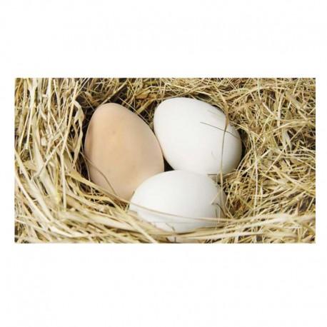 Αυγά Βιολογικά 6τεμ. Τενεκετζή