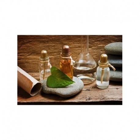 Έλαιο Ιπποφαούς (Καστανάγκαθο) (Sallow Thorn Oil) Bio 30ml Primavera
