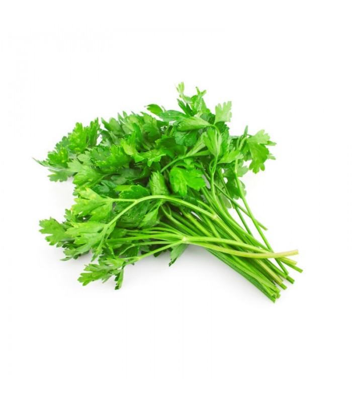 Βιολογικός Μαϊντανός σε Ματσάκι Bio, Ελληνικός, Λαχανικά Greenhouse