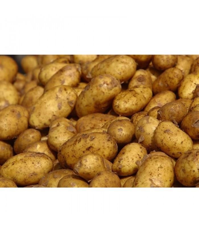 Βιολογικές Πατάτες Κιτρινόσαρκες Bio, Ελληνικές, Λαχανικά Greenhouse