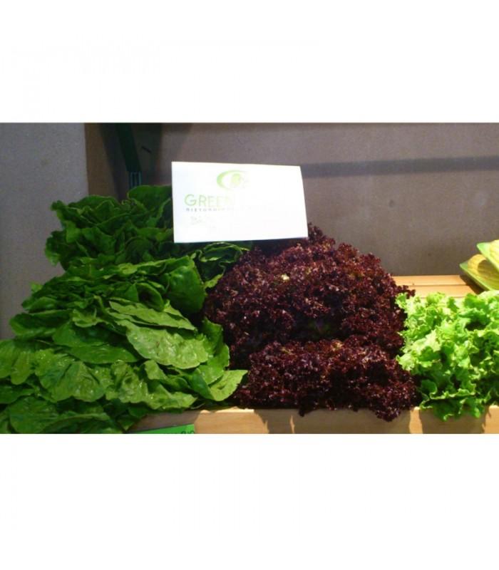 Βιολογικό Μαρούλι Χαλκιδικής Bio, Ελληνικό, Λαχανικά Greenhouse