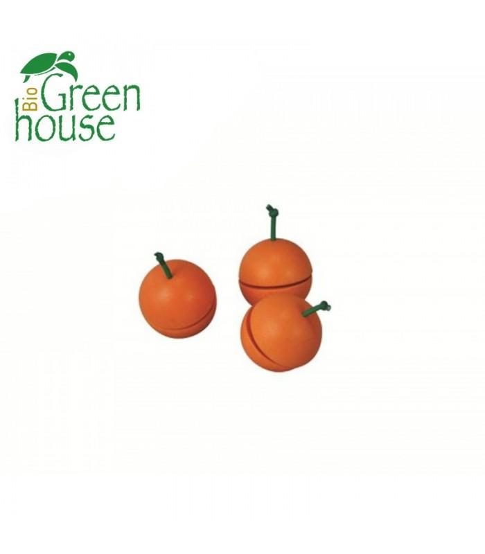 Πορτοκάλι, Plantoys