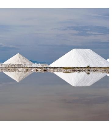 Αλάτι Μεσολογγίου Ψιλό 1 κιλό Βιοφρέσκο