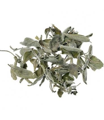 Φασκόμηλο Βιολογικής Καλλιέργειας 20γρ Verum Herb