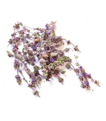 Άγρια Μέντα ή Φλισκούνι Βιολογικής Καλλιέργειας 20γρ Verum Herb
