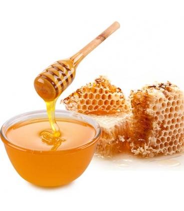 Μέλι Πεύκου Χολομώντα Βιολογικό 480γρ Μέλισσες οι Μάγισσες