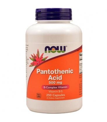 Συμπλήρωμα Pantothenic Acid 500mg - 100 Caps Now Foods