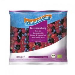 Βιολογικά Φρούτα του Δάσους Κατεψυγμένα Βio 300γρ., Natural Cool