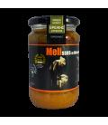 Βιολογικό Μέλι Φθινοπωρινής Ερείκης Χολομώντα Bio 480γρ., Ελληνικό, Μέλισσες οι Μάγισσες