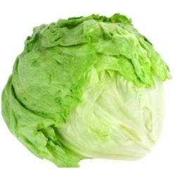 Βιολογική Σαλάτα Χύμα Iceberg Bio, Ελληνική, Λαχανικά Greenhouse
