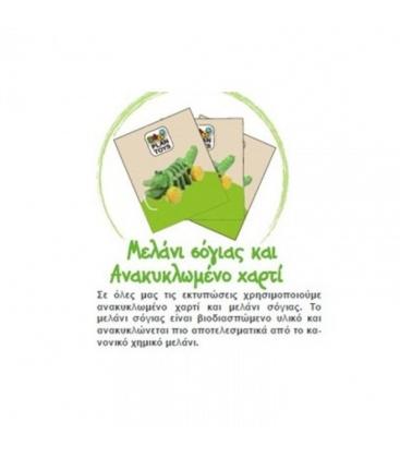 Κουκουβάγια Καστανιέτα Plantoys Ξύλινο, Εκπαιδευτικό, Οικολογικό Παιχνίδι
