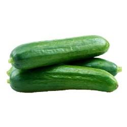 Βιολογικό Αγγουράκι Κνωσσού (κοντό) Κρήτης Bio, Ελληνικό, Λαχανικά Greenhouse