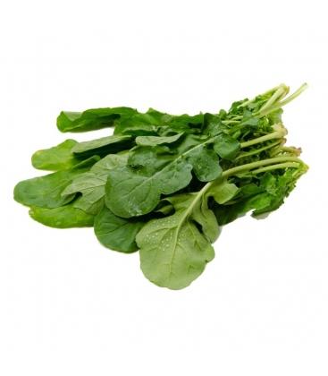 Βιολογική Ρόκα Ήμερη (για σαλάτα) Bio, Ελληνική, Λαχανικά Greenhouse