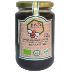 Βιολογικό Μέλι Βελανιδιάς 450 γρ., Bio Φασιλής