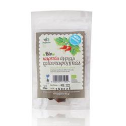 Βιολογικοί Καρποί Άγριας Τριανταφυλλιάς Bio 50γρ., Ελληνικοί, Πήγασος Βιολογικές Υπερτροφές